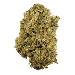 Durban Poison strain California delivery