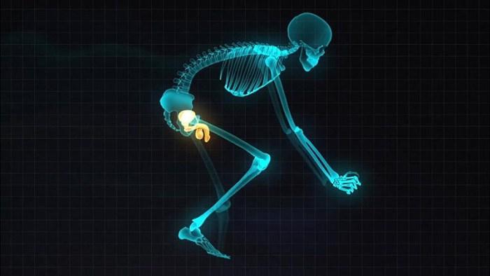 Бионический скутер – мобильная антропоморфная платформа