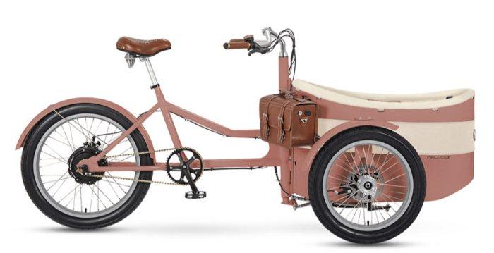 Грузовой электровелосипед Trixie Rayvolt bikes
