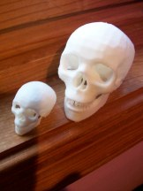 The bigger skull is about 2 inches tall and took about 2.5 hrs to print.