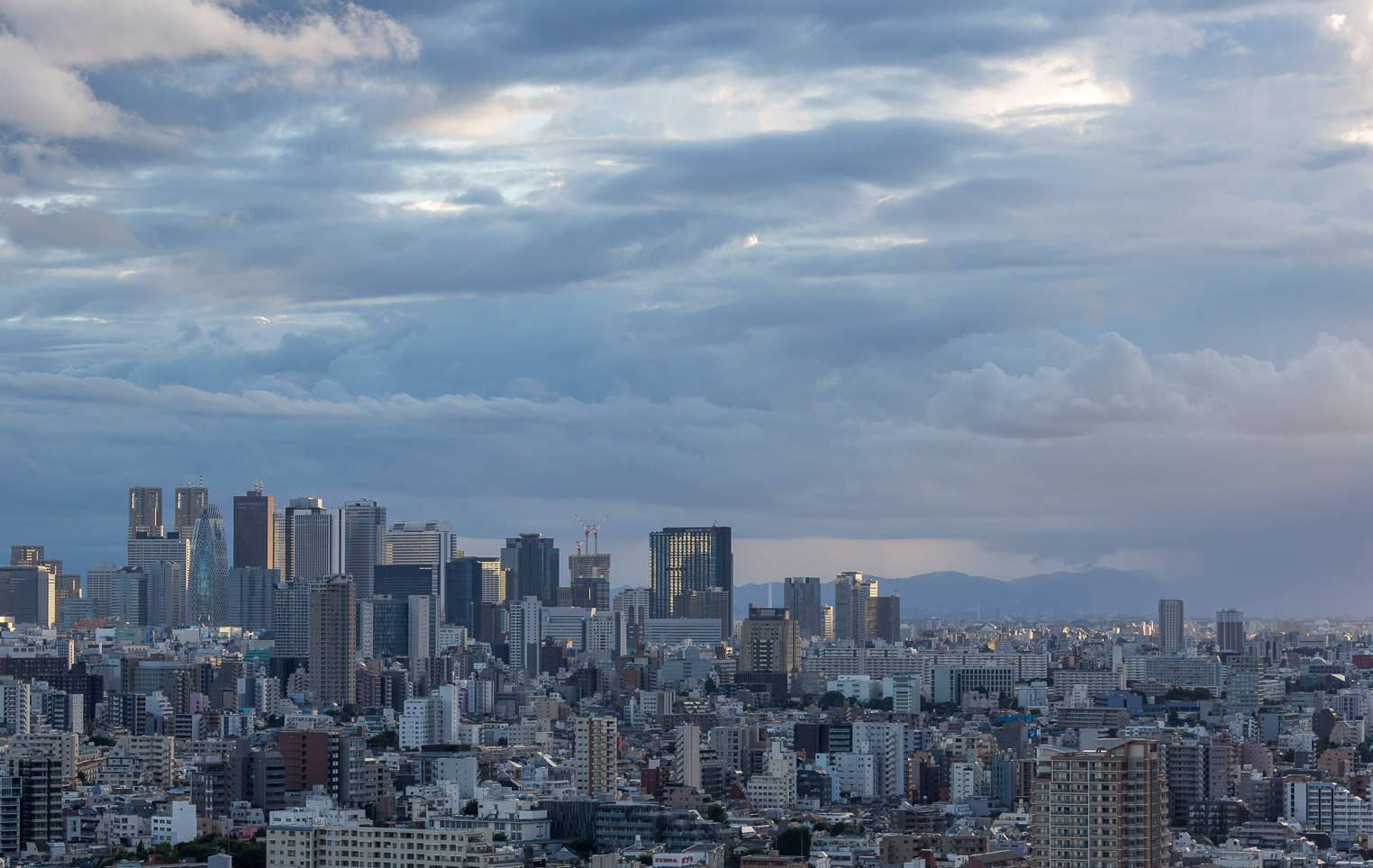 Japan's Vegetable Prices up 70% on the back of Tokyo's