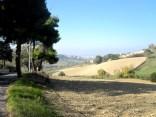 Ancona Marche