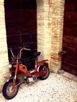 PerugiaBB1