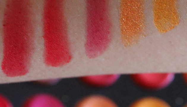 Coastal Scents 252 Ultimate Palette Review