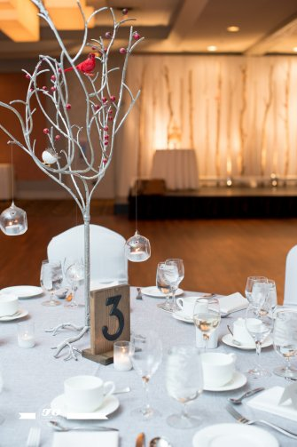 View More: http://fophotography.pass.us/winterbenefitgala