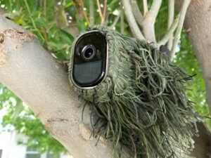 A camera camouflaged on top of a tree is one of the Creative ways to hide outdoor security cameras