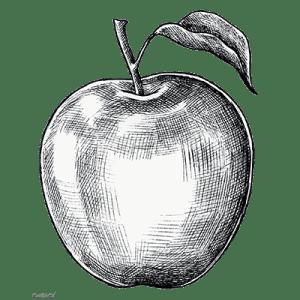 eregast appelcider zilver