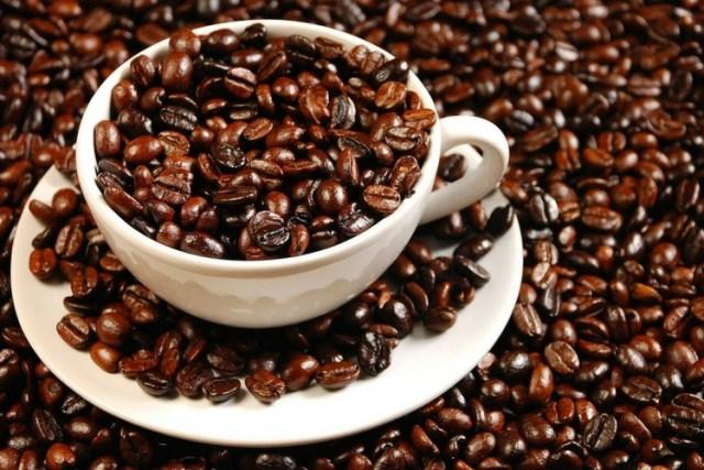 Protegen el café
