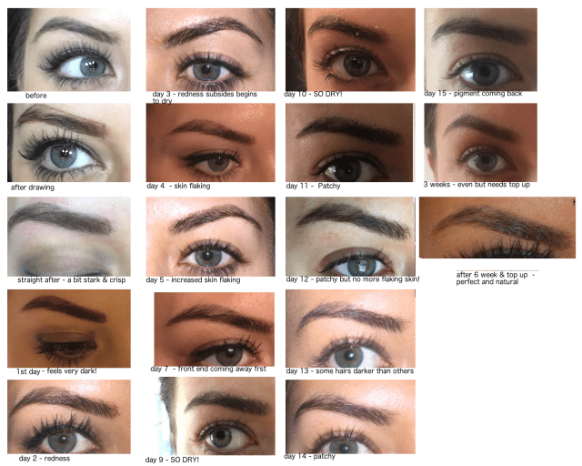 phibrows_stages_after_treatment