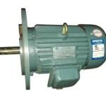 y-series-reducer-motor