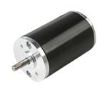 BL36 Brushless Dc Motor