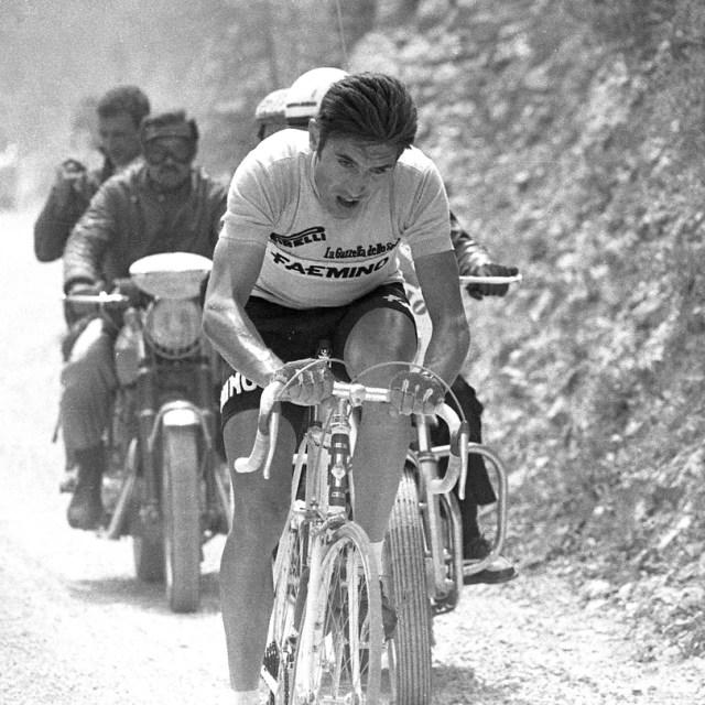 2018 marks the 50th anniversary of Eddy Merckxs first Girohellip