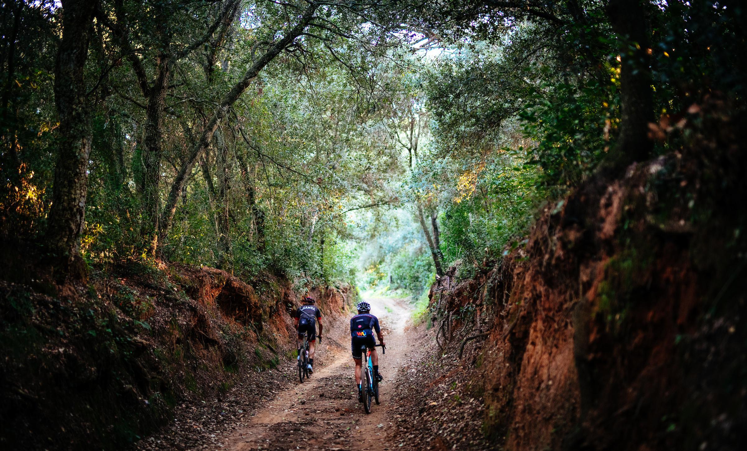 Pinarello Grevil gravel bike first impression review