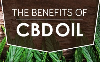 What can CBD Oil do?