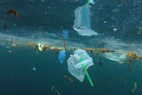 Plastics: a double-edged sword