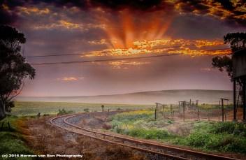 Sunrise in Napier