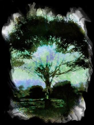 WEB-tree-haiku-30x40cm