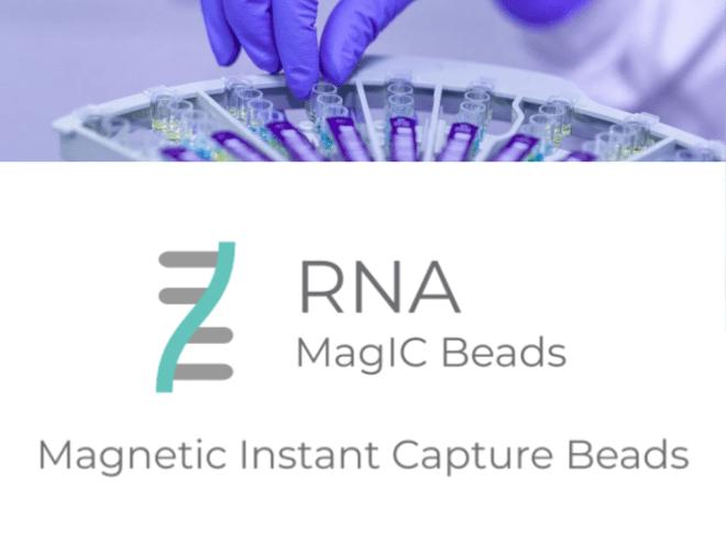 RNA MagIC Beads