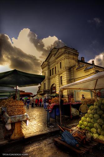 piata din Arges Delia Ceausoglu