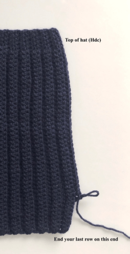 Compass Beanie sts