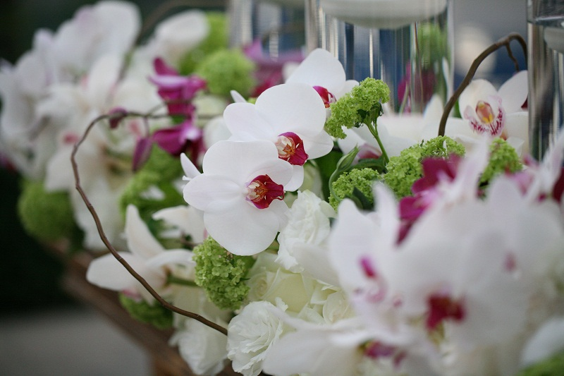 White And Purple Orchid Arrangements For