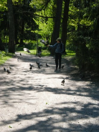 Seurasaari: Porumbei