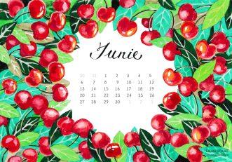Liliana-Arnaut-calendar-iunie-2016