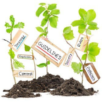 50695691 - photo of plants growing from soil heaps with guidelines conceptual words written on paper cards