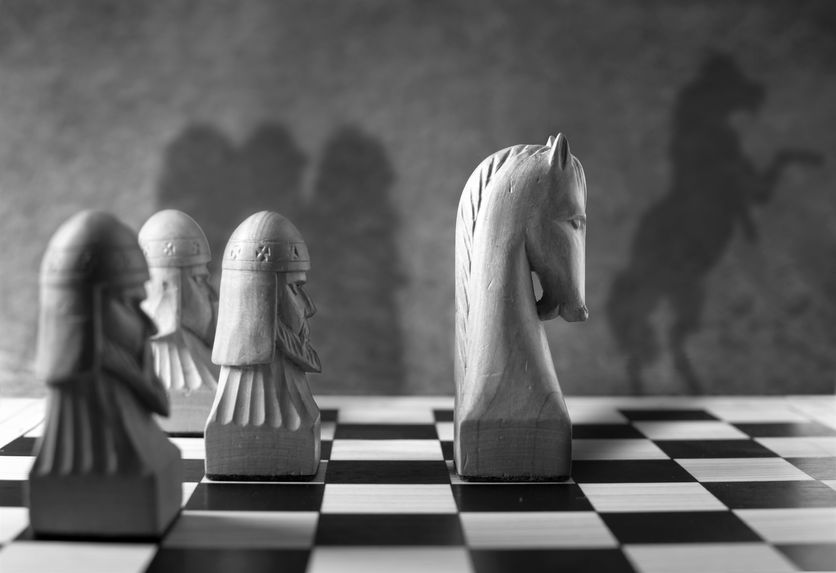 56179610 - chess piece with a rearing horse as shadow