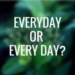everyday - everyday