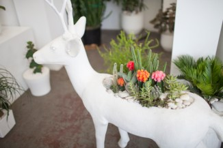 Deer at Plant The Future - entouriste.com