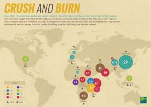 Crush and Burn Ivory GMFER map