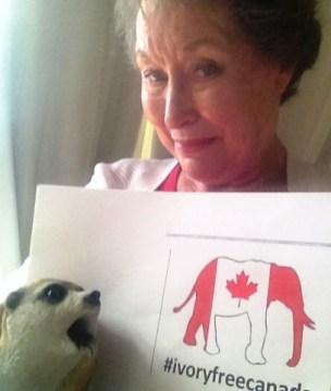 Jenny & Meerkat