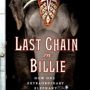 Last Chain on Billie : How One Extraordinary Elephant Escaped the Big Top by Carol Bradley : Review  Part 3