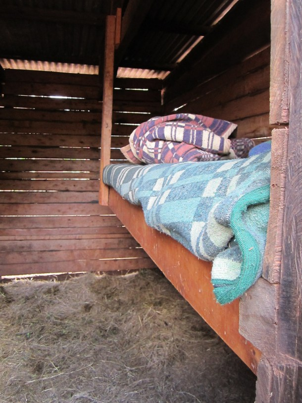 5901141436_2e6479d55e_b1-elephant-dswt-bed-for-keepers-n-stables-cc-flickr