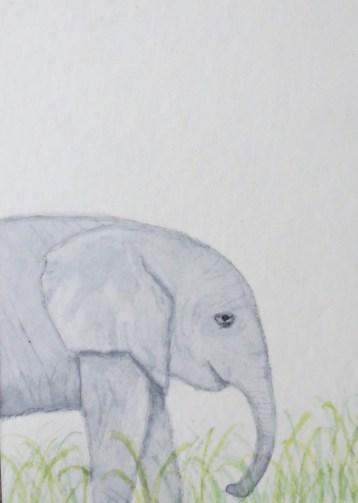 Elephant Art Addison Sleepy elephant in profile (4)