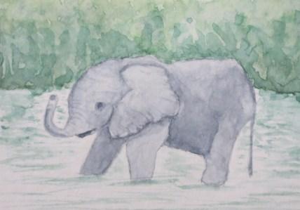 elephant Art by addison grey baby elephant in water (1)