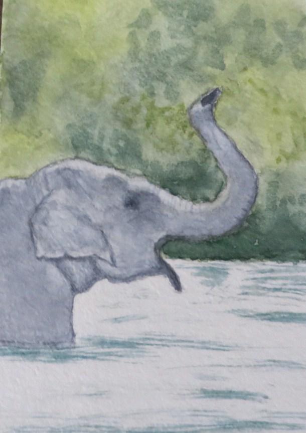 Elephant Art by Addison grey ele profile in water mouth open (2)