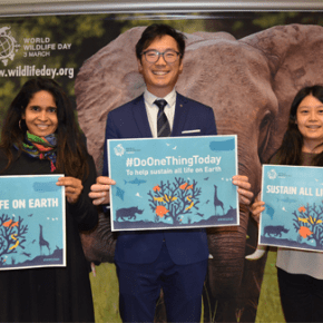 Celebrate World Wildlife Day 3 March 2020 : For Our Elephants