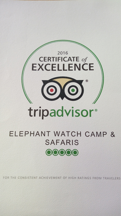 TripAdvisor, review, badge, certificate of excellence, 2014, Elephant Watch Camp, Samburu National Reserve, Elephant Watch Portfolio. Nairobi, Kenya