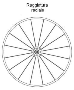 0448 Raggiatura radiale