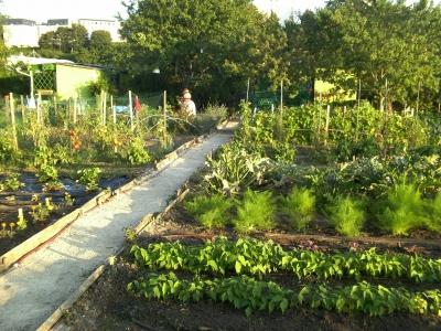 utazás lakóautóval Marseille - Aygalade, közösségi kert termőre fordul