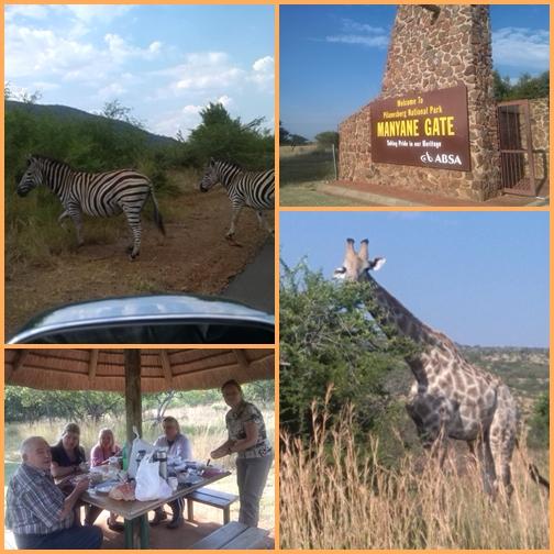 Afrikai szafari és kaszinó - Pilanesberg National Park