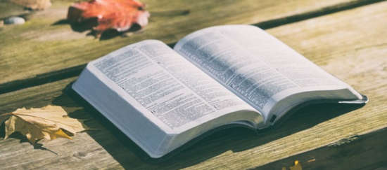 Evangelio del día septiembre 2019