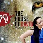 The House Of David