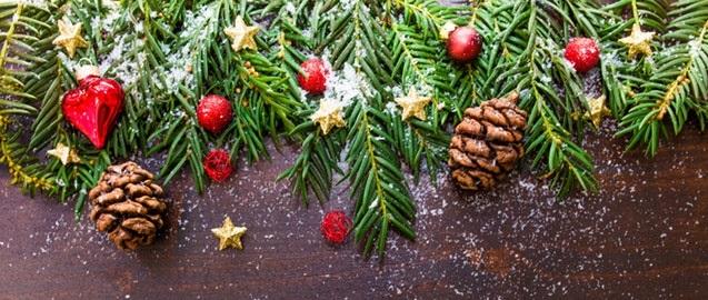 branch-celebration-christmas-christmas-ornament-188971 (1).jpg