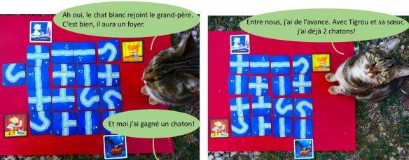 jeu de société pour enfant qui aime les chats