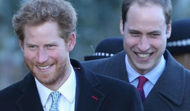 Revelaron la foto de la nostálgica reconciliación entre el príncipe William y Harry 🤝❤️
