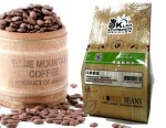 Coffee Bean Pic