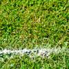 Google Zeitgeist 2012 aus Sicht des Fußballs